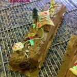 Bûche pâtissière speculoos chocolat / Xmas log chocolate and speculoos
