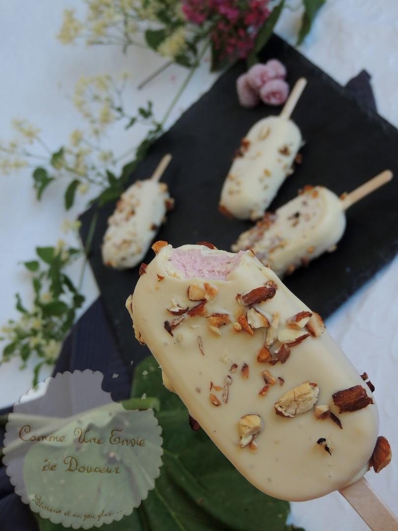 Esquimaux rhubarbe framboise & chocolat blanc