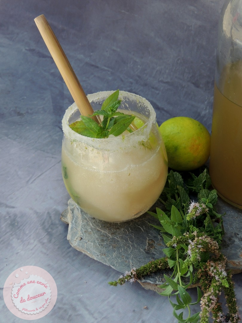 Granité ~ Menthe verveine & citron vert