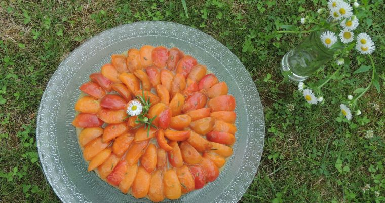 Tarte à l'abricot, compotée de rhubarbe – Apricot & rhubarb tart