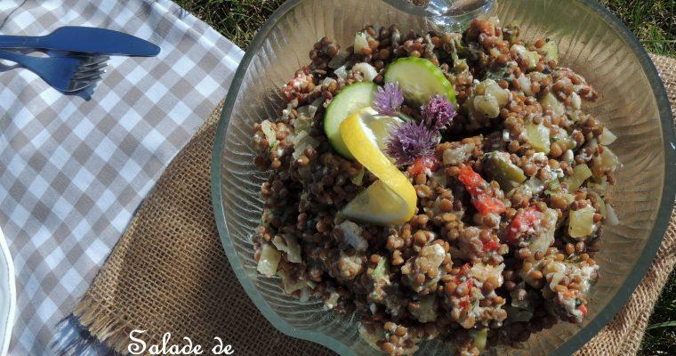 Salade de lentillons de champagne – Champagne's lentils salad