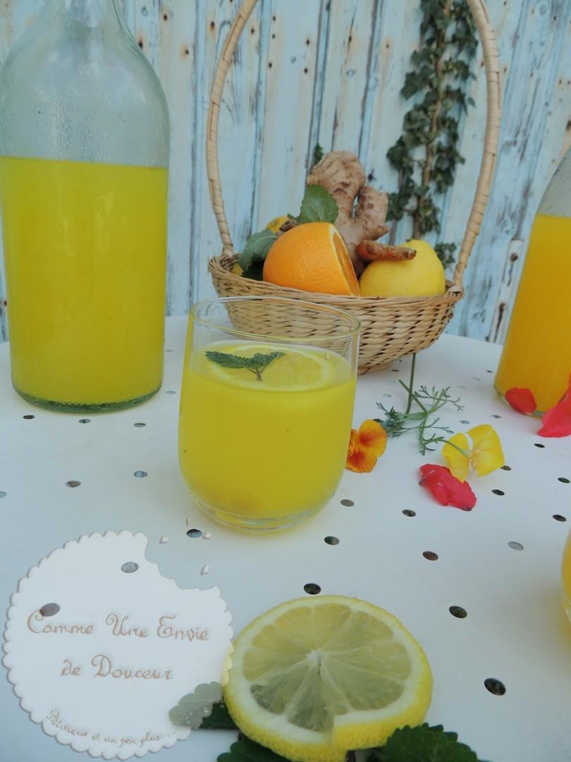 Infusion chaude ou glacée citron curcuma & gingembre ~ Cold or hot lemon, ginger & tumeric infusion