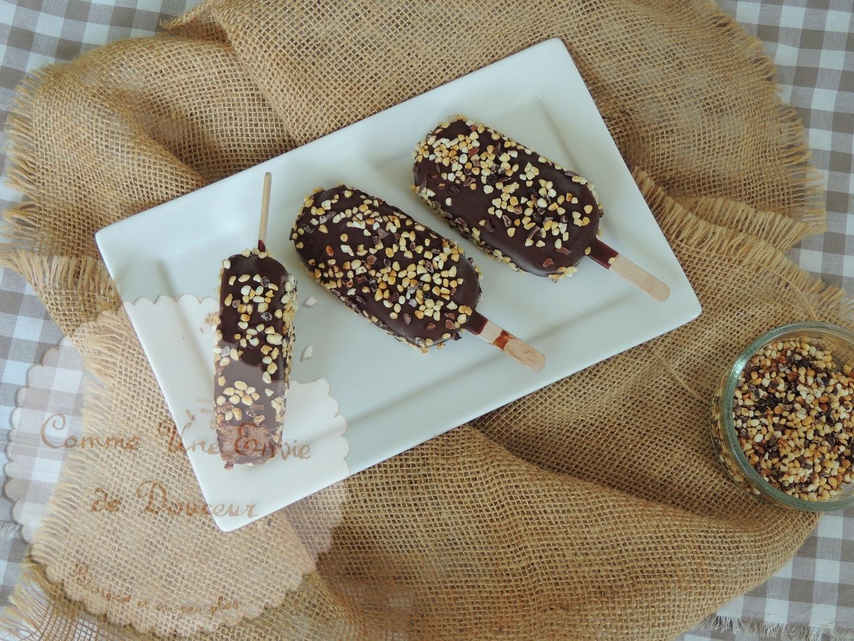 Esquimaux au chocolat ~ Chocolate popsicles